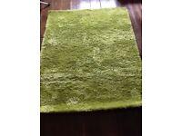 Funky shaggy green rug