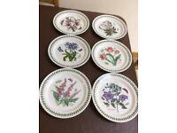 6 Dinner Plates, Botanic Garden design by Portmeirion