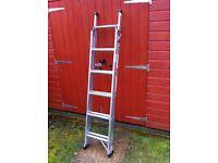 Titan 3way domestic ladder