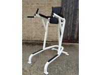 Cybex Dipping/Leg Raise Station (Delivery Available)