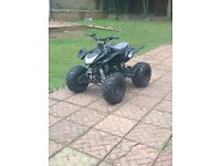 Brand new 125cc big size quad bike mint not pit bike,mini moto,go kart