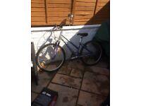Ladies bike giant serona with gel seat front suspension brakes gears all work as should very clean