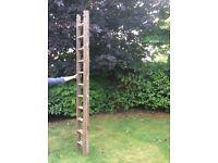 Ladder - Wood, 2 piece , extends 10' - 18' approx