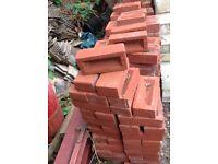 New bricks 250 in number