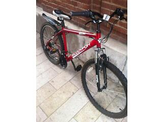"Mountain Bike 16.5"" Hardly Used Excellent Condition"