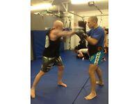Boxing / MMA / Muay Thai Coach