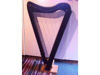 Folk Harp plus accessories