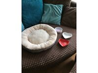 Cute Cat bed and bowls