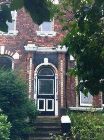 Nr. Sefton Park and Lark Ln. Large 2nd floor studio with own kitchen and bathroom in quiet house