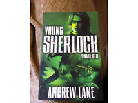 Sherlock Holmes and the Young sherlock books