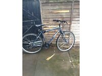 mint condition mountain bike