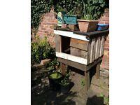 Animal house - duck, rabbits, chickens, cat, hedgehog..