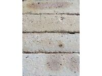 Golden Yellow Rustic Grain Facing Bricks