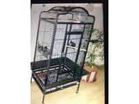 Parrot cage for sale suitable for African grey sized parrot
