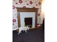 Fire and surround Electric. Brass effect. New bulbs in full working order