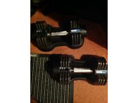 Pro Fitness adjustable dumbells