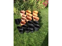 Large Collection of Plant pots