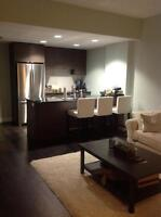 Fully furnished luxury one bedroom condo off 17th ave, new build