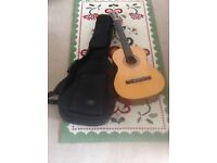 Acoustic Guitar KLC 301 with padded guitar bag