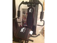 F4H Olympic multi gym home workout station