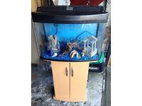 Fisht tank &cupboard