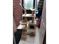 Cat Play Centre