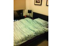 Free or very cheap double room