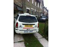 Ford Focus dog van