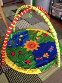 Baby play mat girls/boys