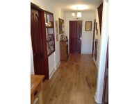 5 solid wood internal doors for sale all doors have brass handles and hinges fitted, buyer collects