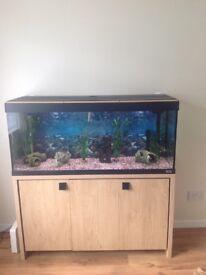 240 ltr fluvall fish tank.