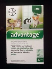 Advantage 40mg flea treatment, 4 pack NEW,