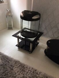 Stunning Fish tank with glass table £29