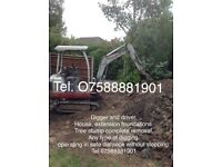 Digger and driver with mini dumper