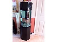 Fish tank on a stand with complete kit