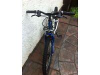 """Apollo xc24 boys bike 12"""" frame"""