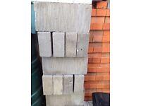 Celon aerated blocks