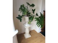 LARGE JARDINIERE AND PLANT FOR SALE