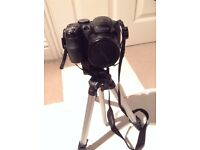 Fujifilm Finepix S2950 Digital Camera with Tripod and Carrying Case