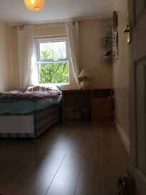 Double room for a working professional, close to Addenbrooke's, Mill road, available NOW.