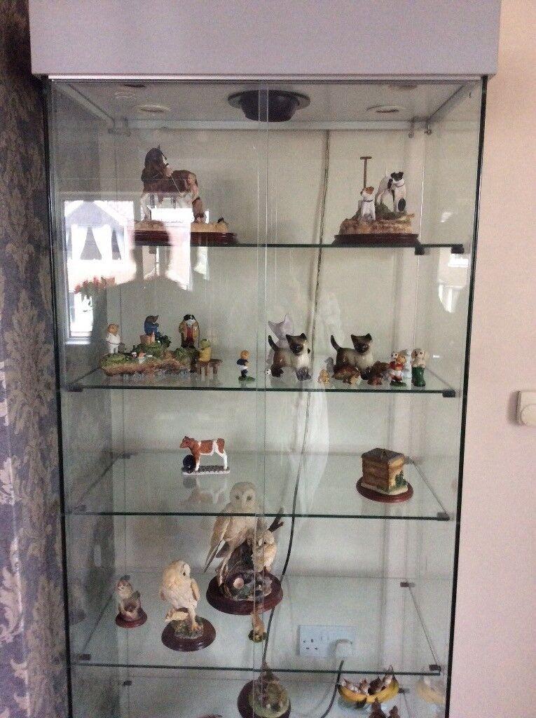 Glass Display Cabinet For Sale   in Okehampton, Devon ...