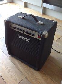 Roland GC 405 Guitar Amplifier mini half stack
