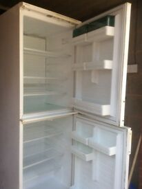 Upright double fridge. Superb beer fridge and brilliant for parties! Very clean