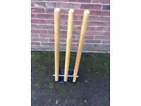 Practice cricket wickets