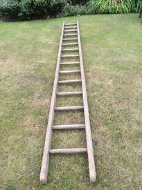Wooden ladder.