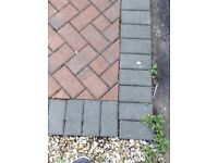 Red/bridle block pavers