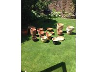 Various Terracotta Pots for sale