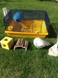 HAMSTER CAGE MULTI LEVEL WITH LOTS OF EXTRAS ONLY£25