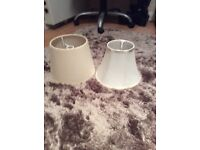 Two Lamp Shades