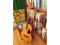 Johnny Brook Acoustic-electric Guitar